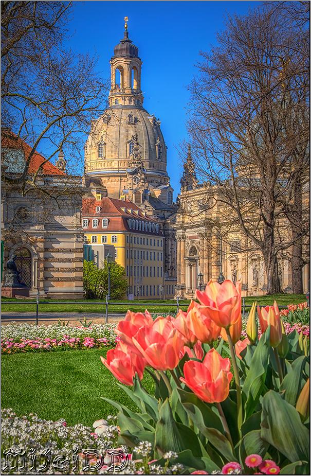 Frühling in der Altstadt