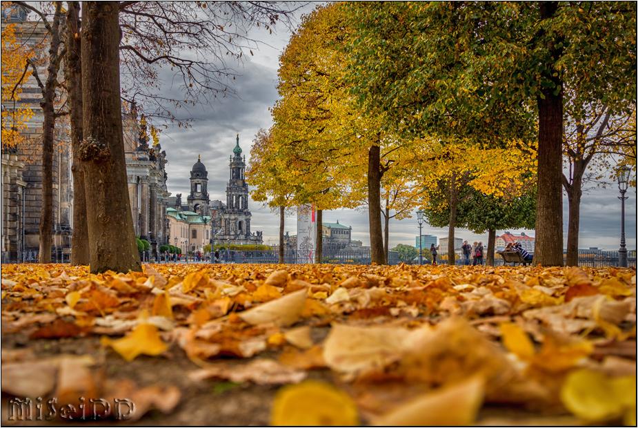 Herbst an der Brühlschen Terrasse