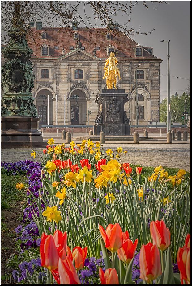 Frühling am Goldenen Reiter